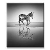 Running Zebra Modern Canvas Painting Ben Heine Cute Giclee Artwork 24 x 36 Inch