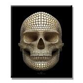 Modern Canvas Print Ben Heine skull Giclee 24 x 36 Inch