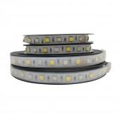 RGB CCT LED Strip Light 5050 RGB+Dual White Led Stripe Holiday Decoration Led Tape Lights 24V 12MM PCB 5m