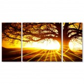 3 Panels Stretched Canvas Art Photographic Giclee Artwork Tree Silhouette in Sunrise Time Landscape Print On Canvas12x24 Inch x2pcs+ 24 x 24 Inch
