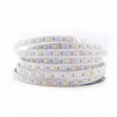 5M DC12V RGBW 5050 SMD LED strip Light 60Leds/M 300 LEDs