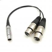 Atomos Dual 3 Pin Female XLR To 10 Pin Straight Plug Breakout Audio Input Cable for Shogun Monitor Recorder