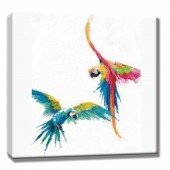 Colorful birds Hand Painted Oil Painting with Stretched Frame Wall Art 24 x 24 Inch