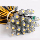 2000pcs 9 mm LED Point Light 12v Led Backlight For Letter Sign Advertising Waterproof IP67 Led Pixel Module 50pcs/String