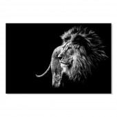 Canvas Wall Art Animal Lion in Black and White Wall Pictures Giclee Print on Canvas Stretched 24 x 36 Inch