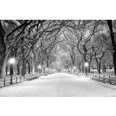 Modern Canvas Inkjet Print Art Landscape Snowy Central Park Wall Pictures Giclee Print on Canvas Stretched 40 x 20 Inch