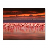 Modern Canvas Wall Art Animal Flamingos Landscape Sunset Wall Pictures Giclee Print on Canvas Stretched 40 x 30 Inch